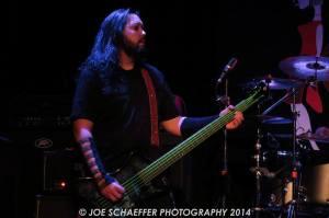 Shane green strings